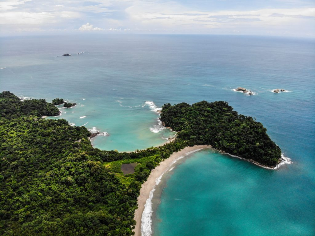 Lush forestry surrounded by sand and sea